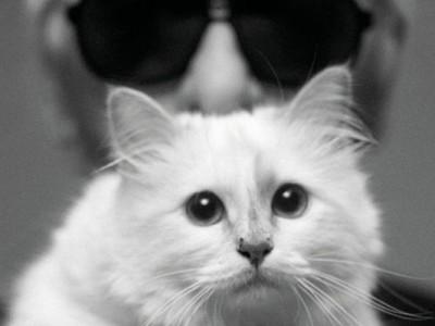 Choupette, el gran amor de Karl Lagerfeld